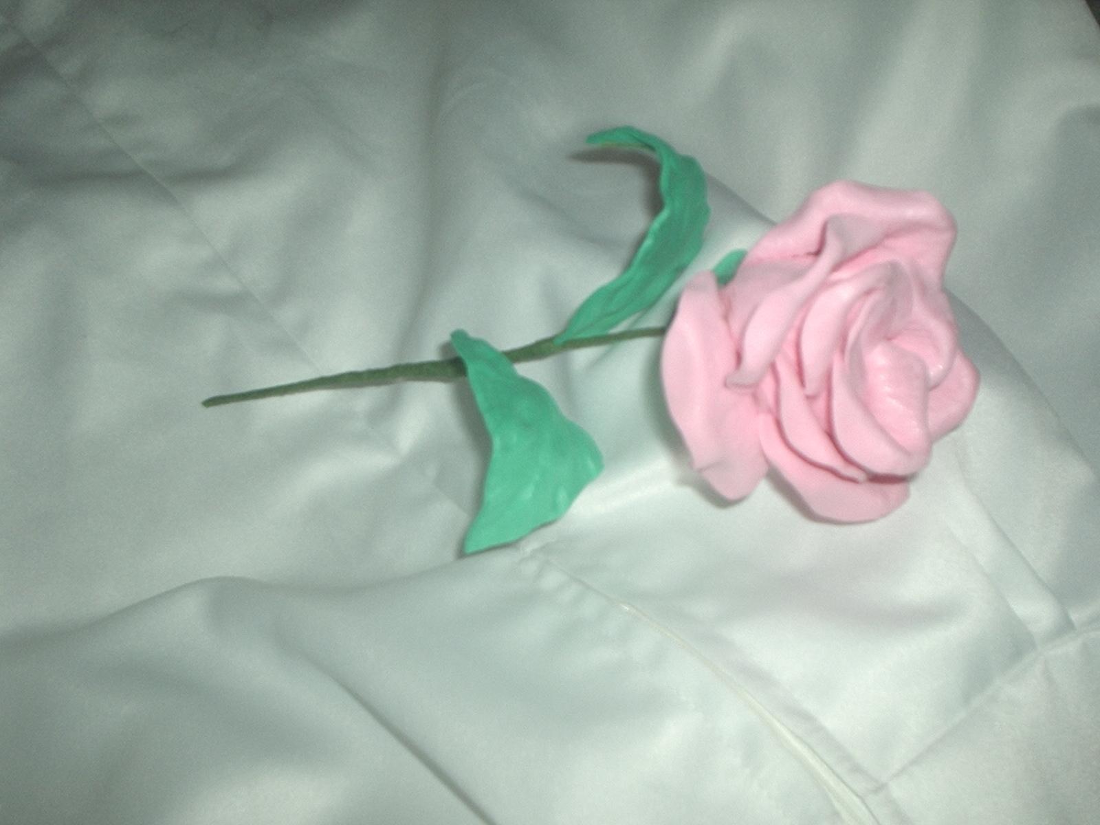 Dise  O F  Cil  Realmente Muy F  Cil  O Esta Rosa  Que Fue La