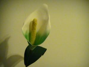 Flores en goma eva, armando la Cala.
